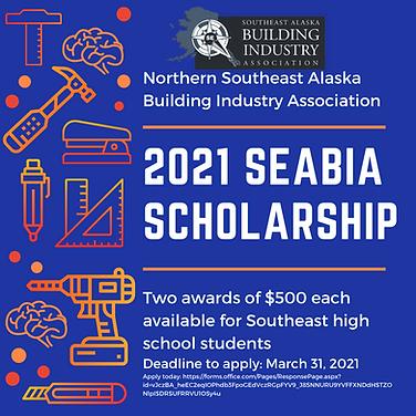SEABIA Scholarship 2021.png