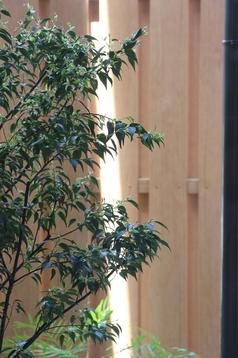 06/14 日常と非日常の狭間 ガーデン工事