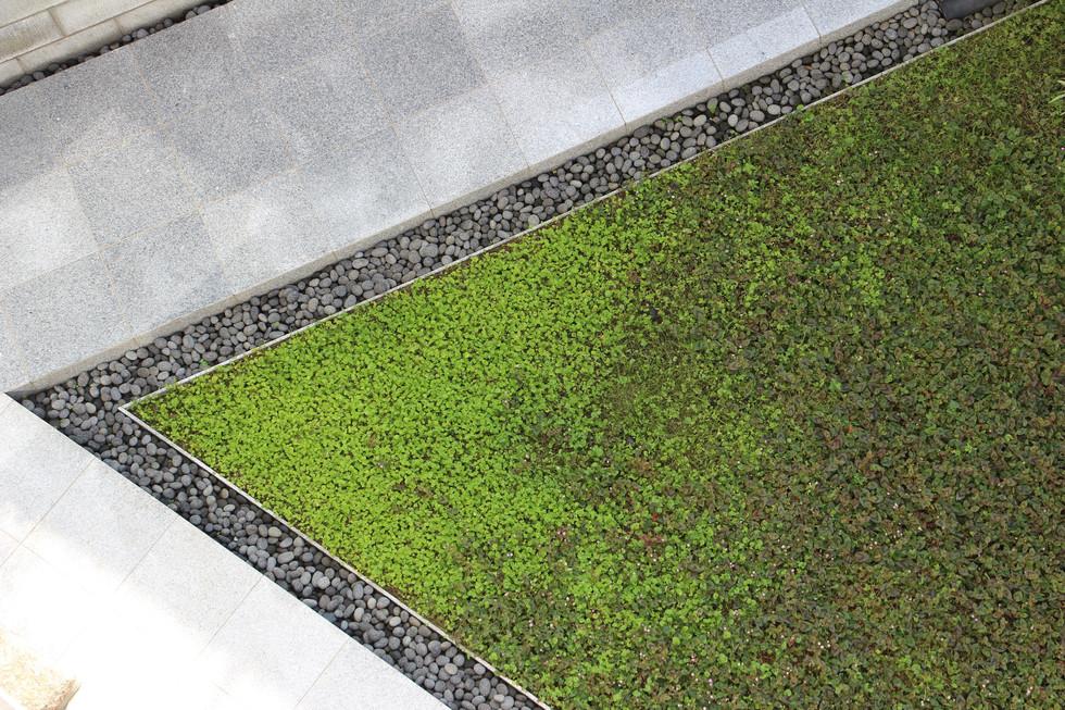 05/10 自邸 未完の庭 ガーデン工事