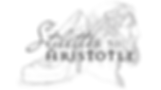 Stilettos to Aristotle Logo.png