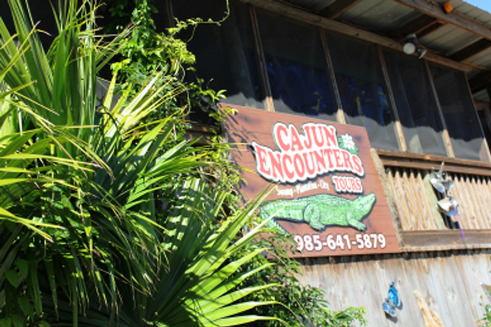 Our Cajun Encounters Swamp Tour.