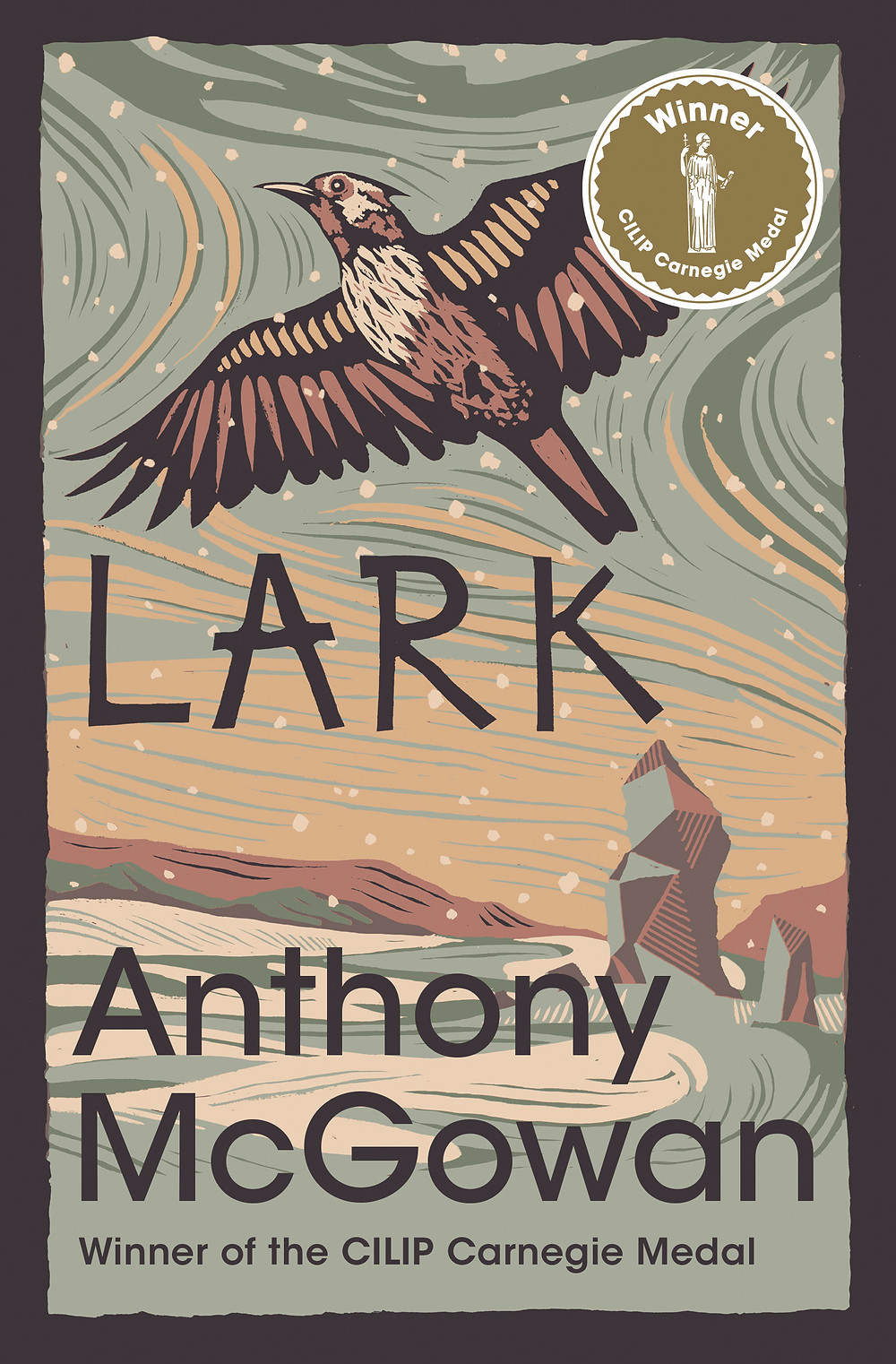 Lark, a book for dyslexic teens that explores family relationships