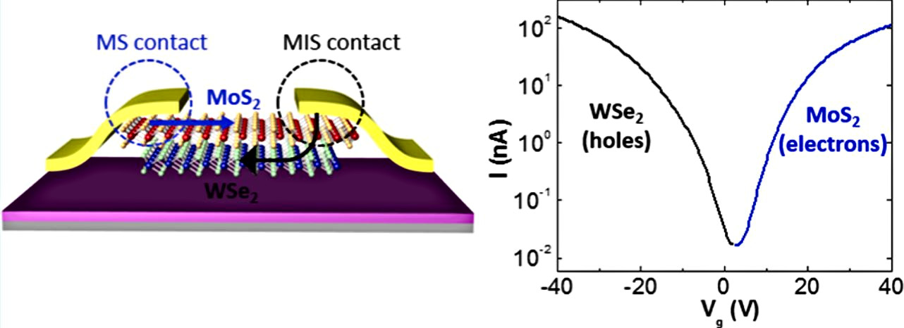 Tunable Electron and Hole Injection Enabled by Atomically Thin Tunneling Layer for Improved Contact Resistance and Dual Channel Transport in MoS2/WSe2 van der Waals Heterostructure.