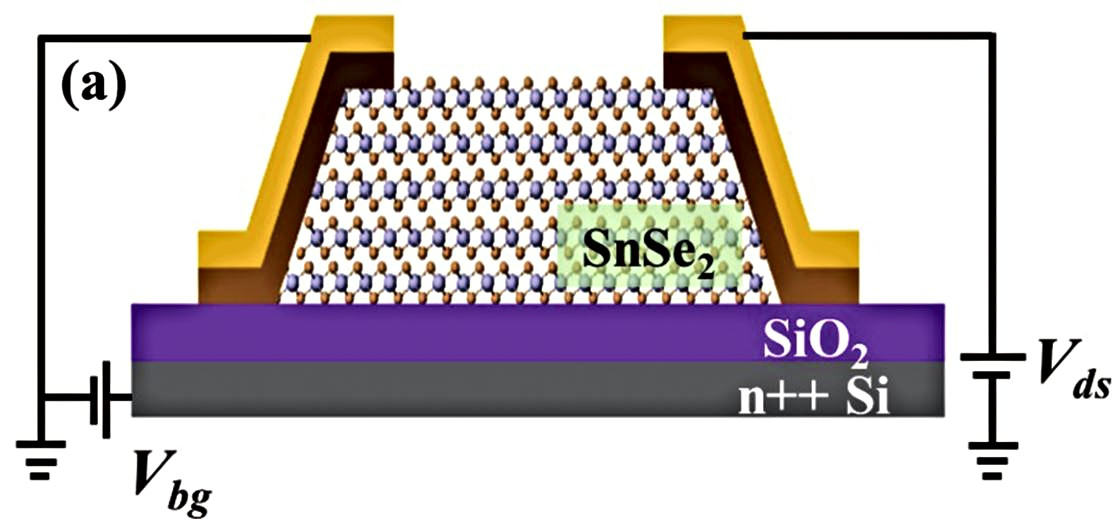 Photodetector Based on Multilayer SnSe2 Field Effect Transistor.
