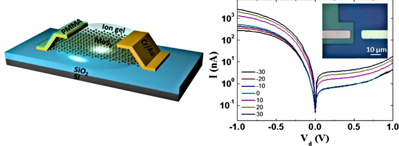 Junctionless Diode Enabled by Self-Bias Effect of Ion Gel in SingleLayer MoS2 Device.