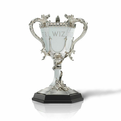 HARRY POTTER THE TRIWIZARD CUP