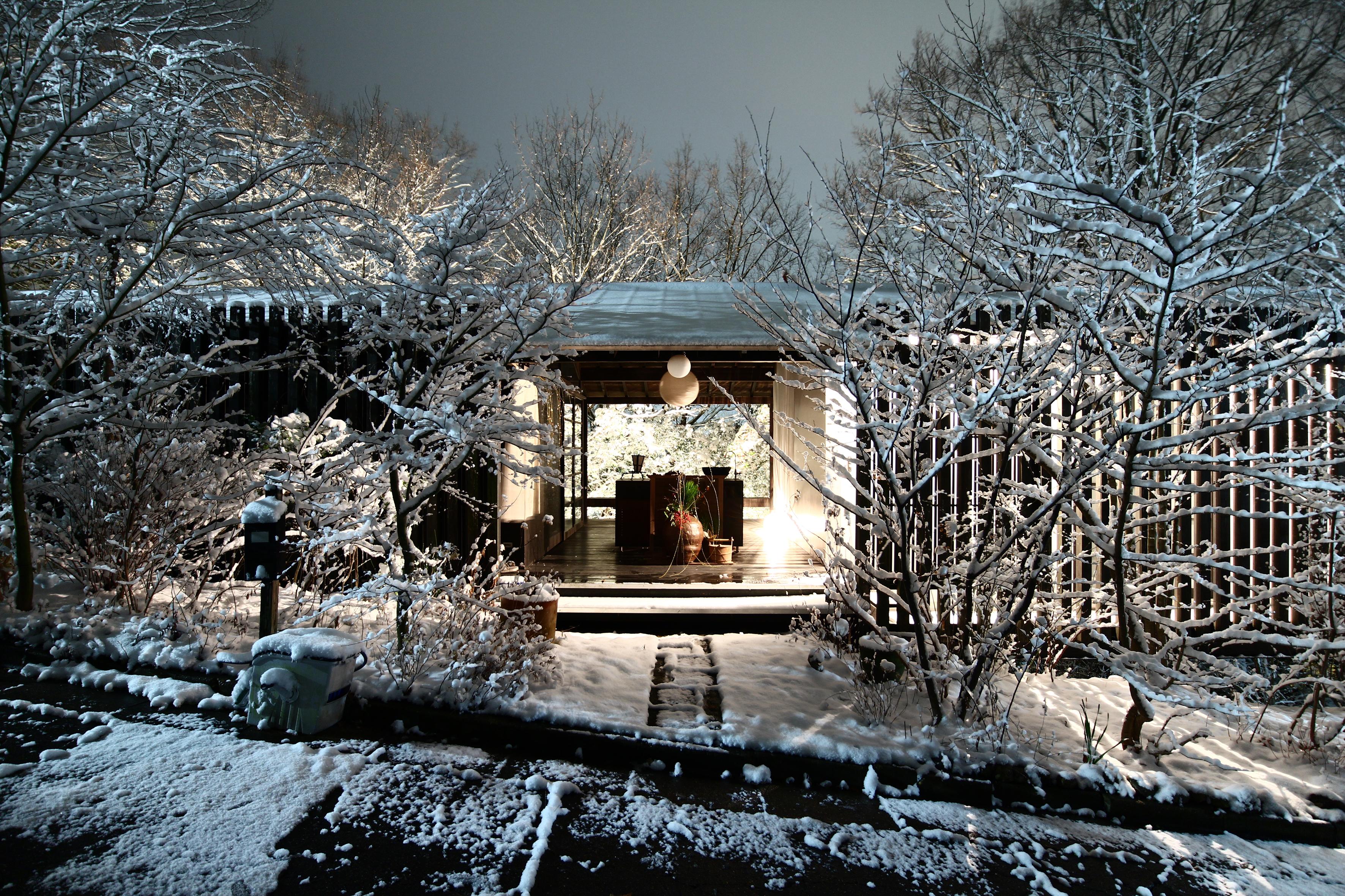Snapshot(Snow scene)