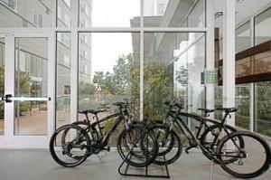 Element-Bikes-to-Borrow-300x199