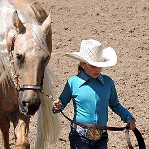 Rodeo / Horse Shows