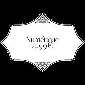 numérique 4,99€ broché 19€ (8).png