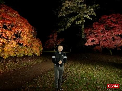 BBC Breakfast Weather From Westonbirt, The National Arboretum