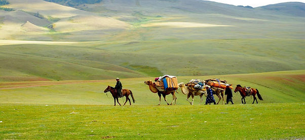 Steppe Mongolei