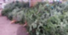 Bill Docherty's Plants  Nursery  Gateshead