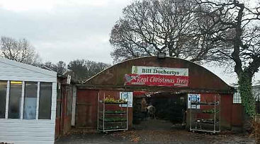 Bill Docherty's Plants| Nursery| Gateshead