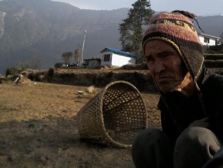 Profiles from Nepal: Gyamjo Sherpa