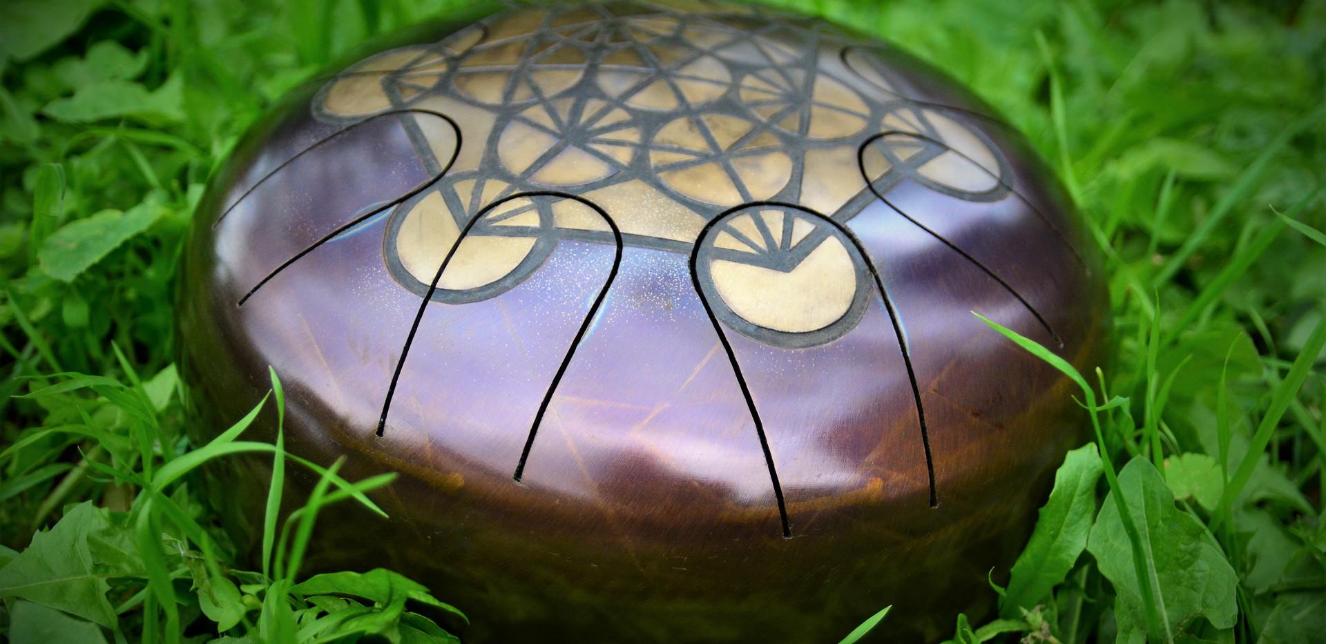 Dans l'herbe tankdrum - instrument de musique - hang - handpan - yoga