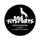 Logo Trainer 1.png