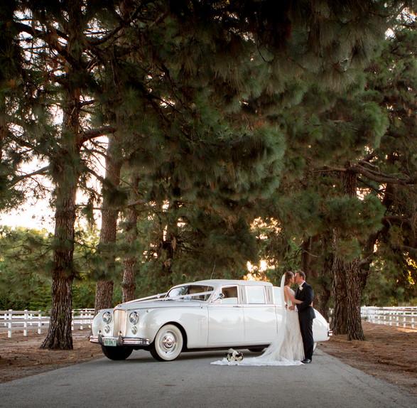 Brockman Wedding-527.jpg