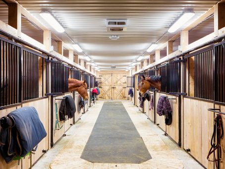 Trading Services: Is Swapping Chores for Riding Lessons Better than Paying Cash?