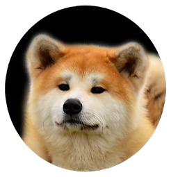 Logo gaiko.png