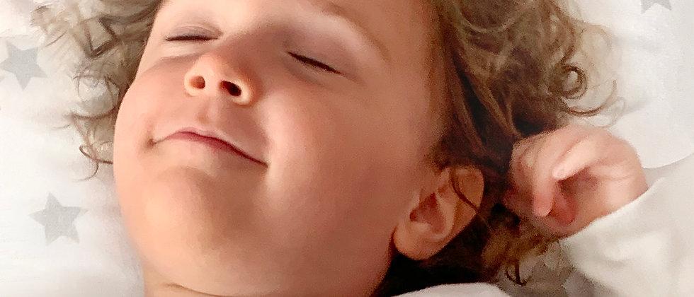 Toddler Comfort Pillow with pillow case