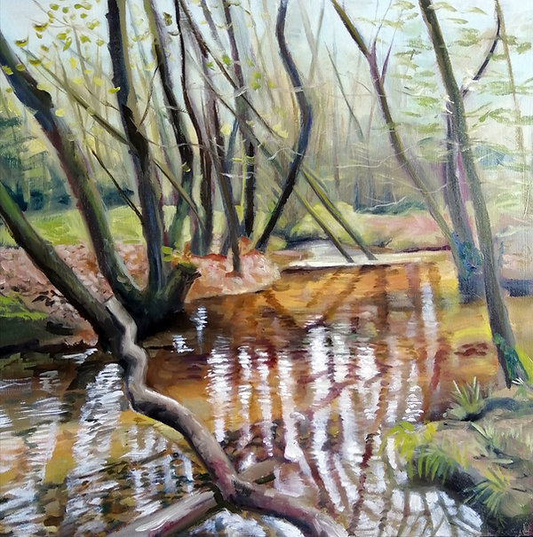 Dalby Forest Stream 1.jpg