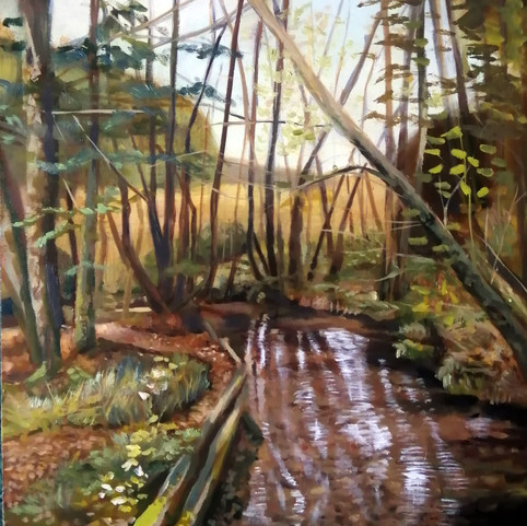 Dalby Forest Stream 2