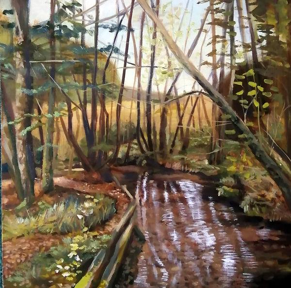 Dalby Forest Stream 2.jpg
