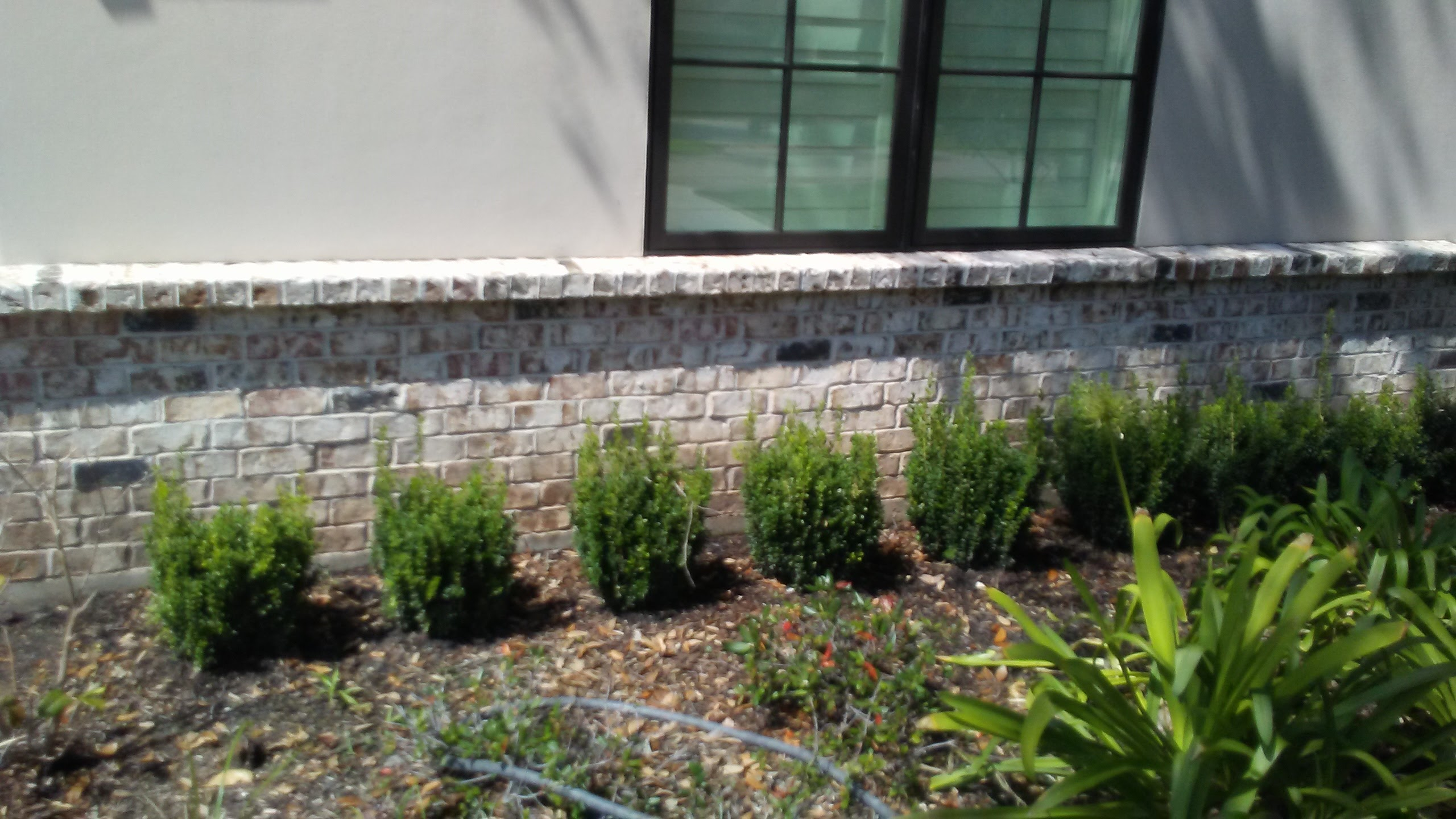 Brick half-wall