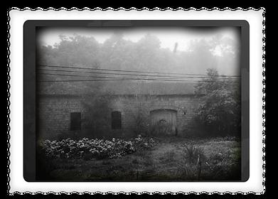 vinicola_antiga_HISTÓRIA.png