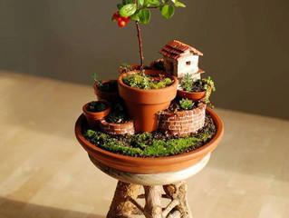 Aprenda Como Fazer - Jardim Vertical!