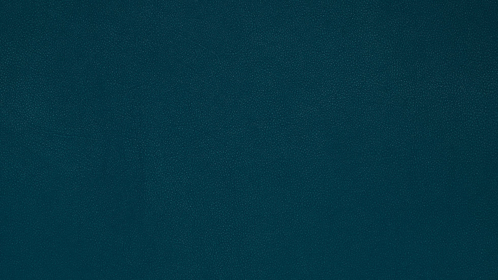 bg-couro-azul.jpg