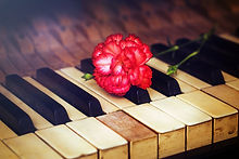 Old Vintage Gand Piano Keys With A Red Carnation Flower, Vintage Picture, Music Concept.jpg