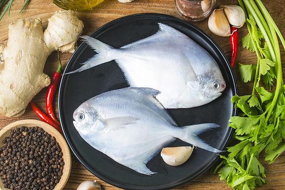 White Pomfret medium 1 KG Full Fish
