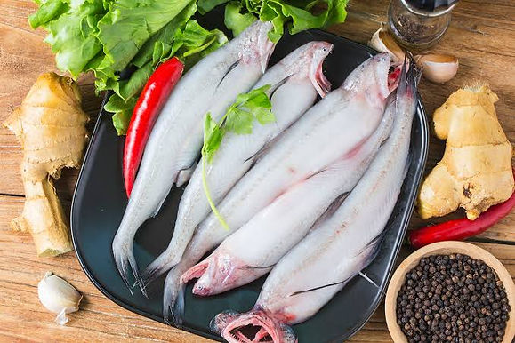 Bombil/ Bombay Duck Full Fish 1 KG