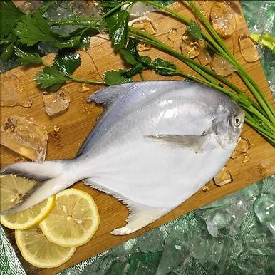 White Pomfret Full Fish 1 KG