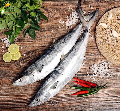 Surmai/ Seer Full Fish Cut 1 KG