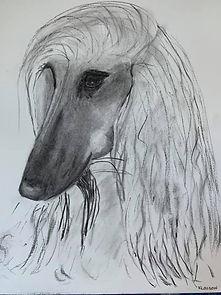 Ellen Sketch.jpg