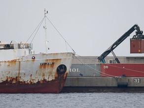 Jungbullen auf Mittelmeer-Frachter