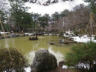 新潟総鎮守『白山神社』へお参りに