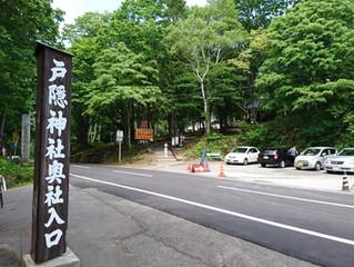 今年も行ってきました。戸隠神社・奥社です。