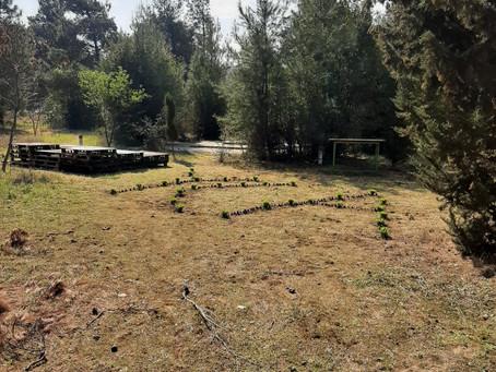 Planting new seedlings in Karatasou Park