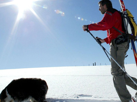 Pas de ski de randonnée, pas de promenade en raquettes quand le risque d'avalanches est important