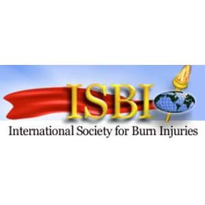 Logo ISBI