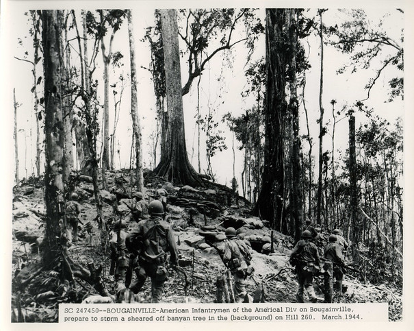 Hill 260 after 2nd Battle of Bougainville.