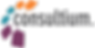 LOGOonsultium-logo (1).png