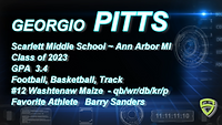 Player Profile page