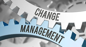 Change Management PEMS.jpeg