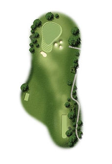 Hole 15 (Hole in One).jpg