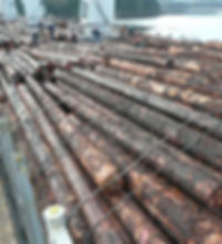 Typical timber deck lashing completed on a cargo of logs BC port
